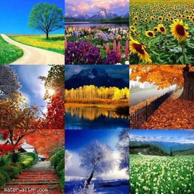 Dört Mevsim Masalı