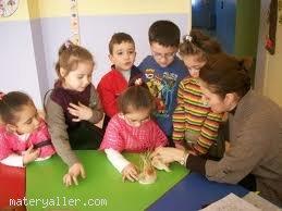 Çocuk Gelişimi Meslek Elemanı