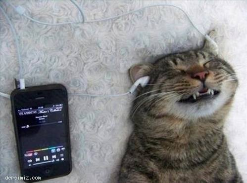 Bayılıyom şu müziğe