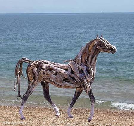 Deniz atı:)