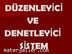 D�zenleyici ve denetleyici sistem